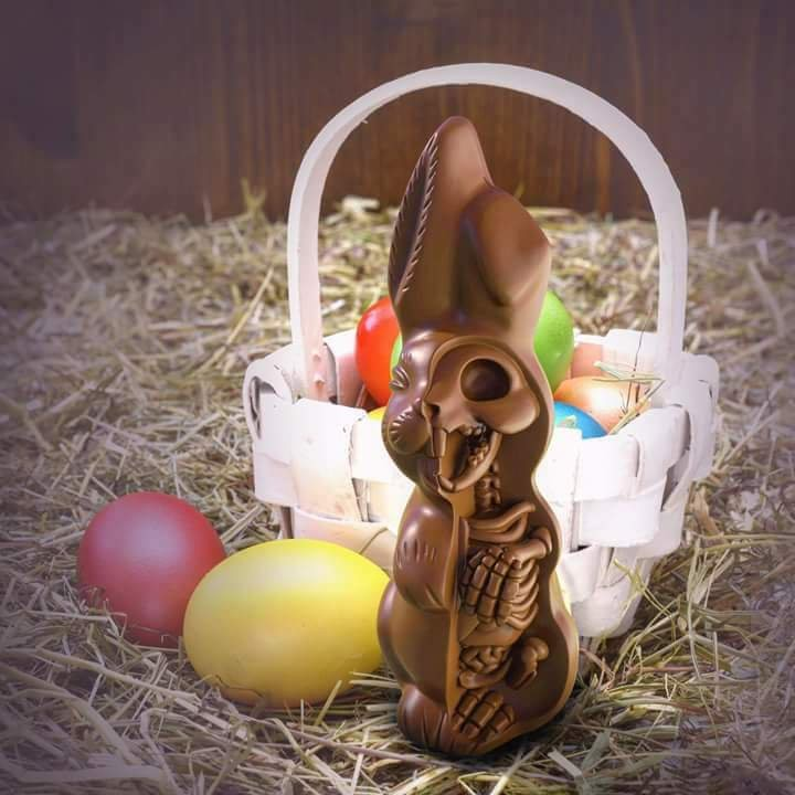 Easter eggs for radiographers - bunny ultrasound - chocolate x-ray
